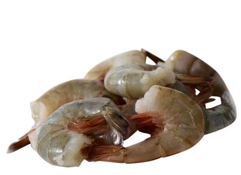 Shrimp_21-25white_zpse214c319_5fb9c2b8-262c-437e-b1a2-983c59550d01_large