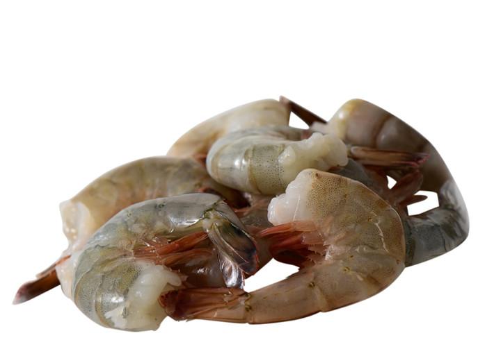 Shrimp_21-25white_zpse214c319_5fb9c2b8-262c-437e-b1a2-983c59550d01
