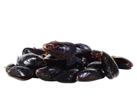 Shellfish_Mussels_zpse40b13c1_large
