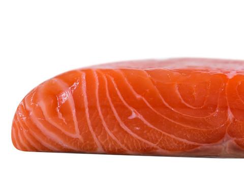 Fish_AtlanticSalmon_zps8a76222a_large