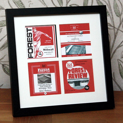 Nottingham Forest Framed Print