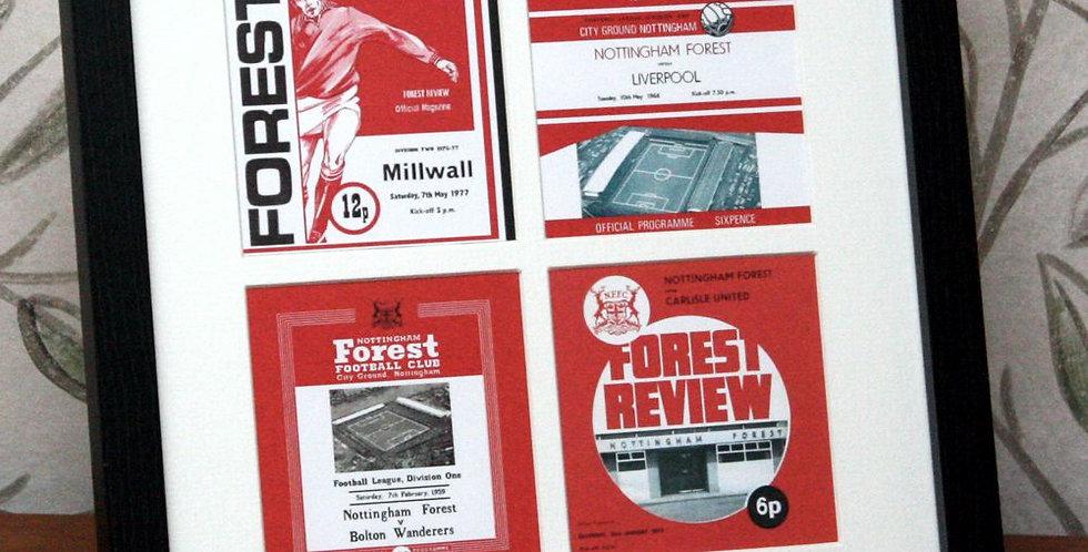 Nottingham Forest Framed Print