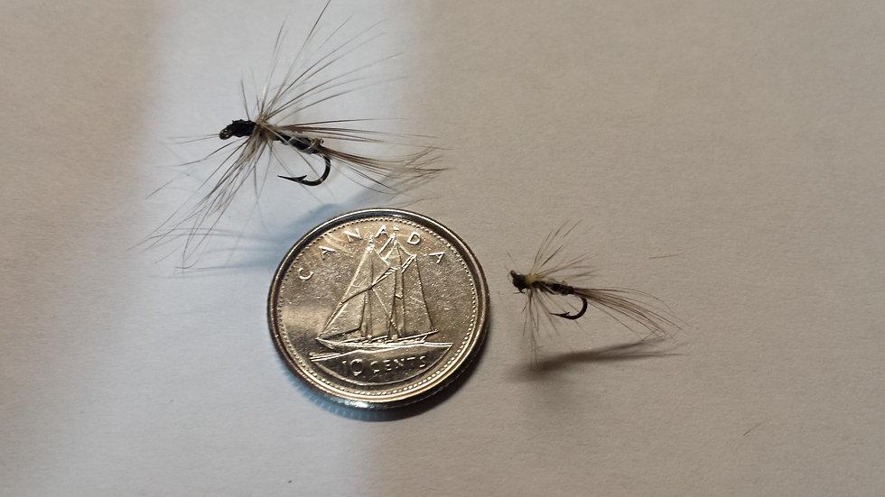 Mini mouche