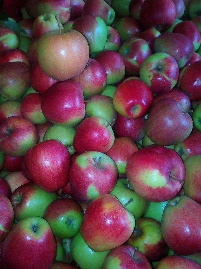 Il tempo delle mele ;-)