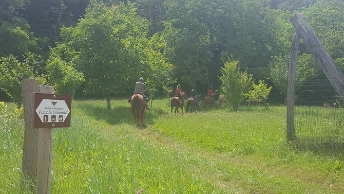 Trekking a cavallo: qualche scatto :-)