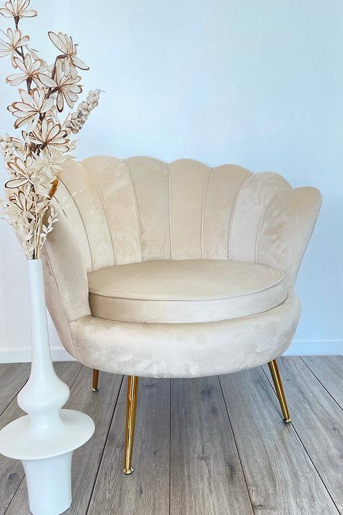 Cream shell chair rental