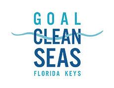 goal clean seas.jpg