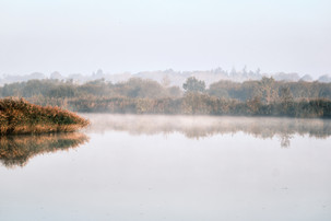 Norfolk Broads in the mist