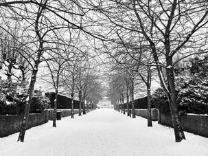 Local snow scene in Norwich