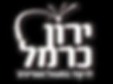 ירון כרמל - לוגו.png