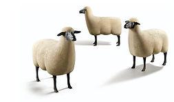 François-Xavier Lalanne, Moutons, Sheep, Concrete