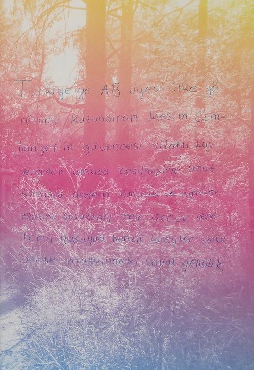 White Lies by Ali Taptık
