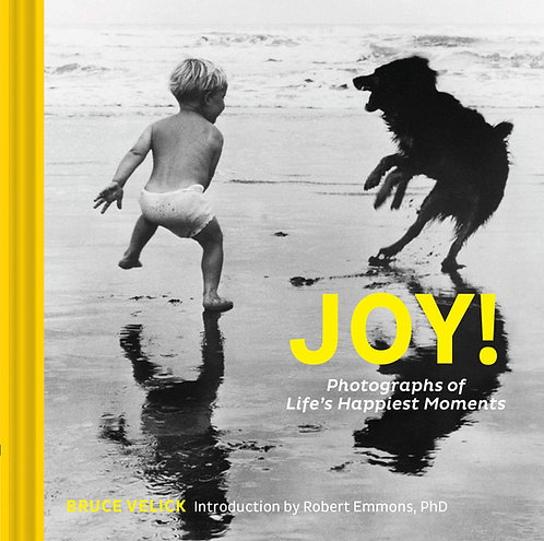 Joy!: Photographs of Life's Happiest Moments by Bruce Velick