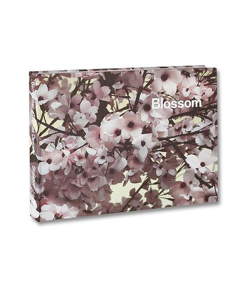 Blossom by Ben Lerner & Thomas Demand