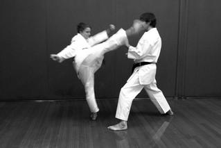 Hiki-te - Initiating the Centrifugal Action Through the Hara