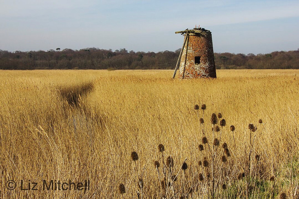 Suffolk windmill