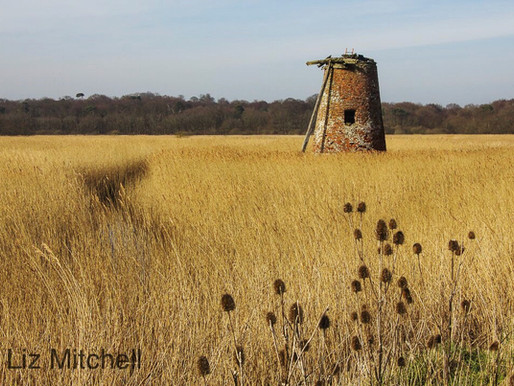 Delights of Suffolk
