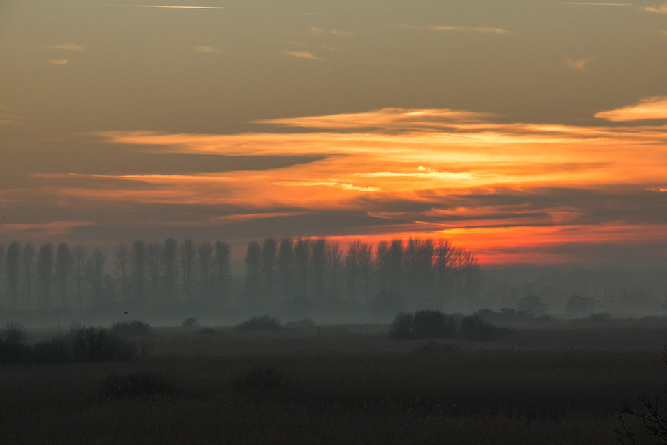 Sunset over the marshes