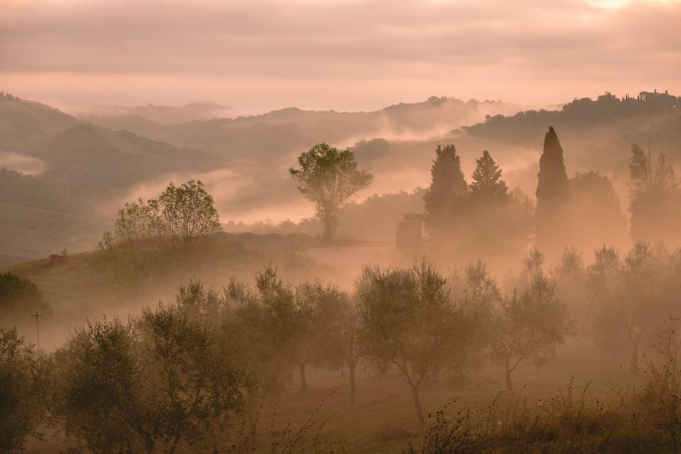 Misty morning, Tuscany