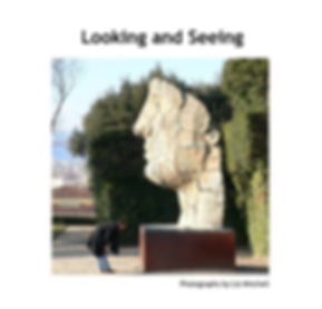 Cover page of 'Looking and Seeing' by Liz Mitchell