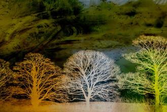 River Dane Winter