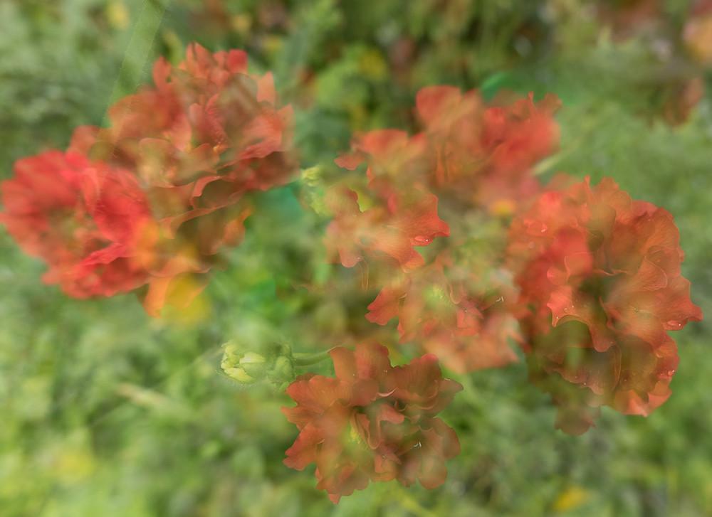Multiple exposure created in camera