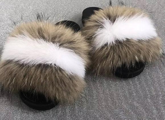 White Raccoon Mink