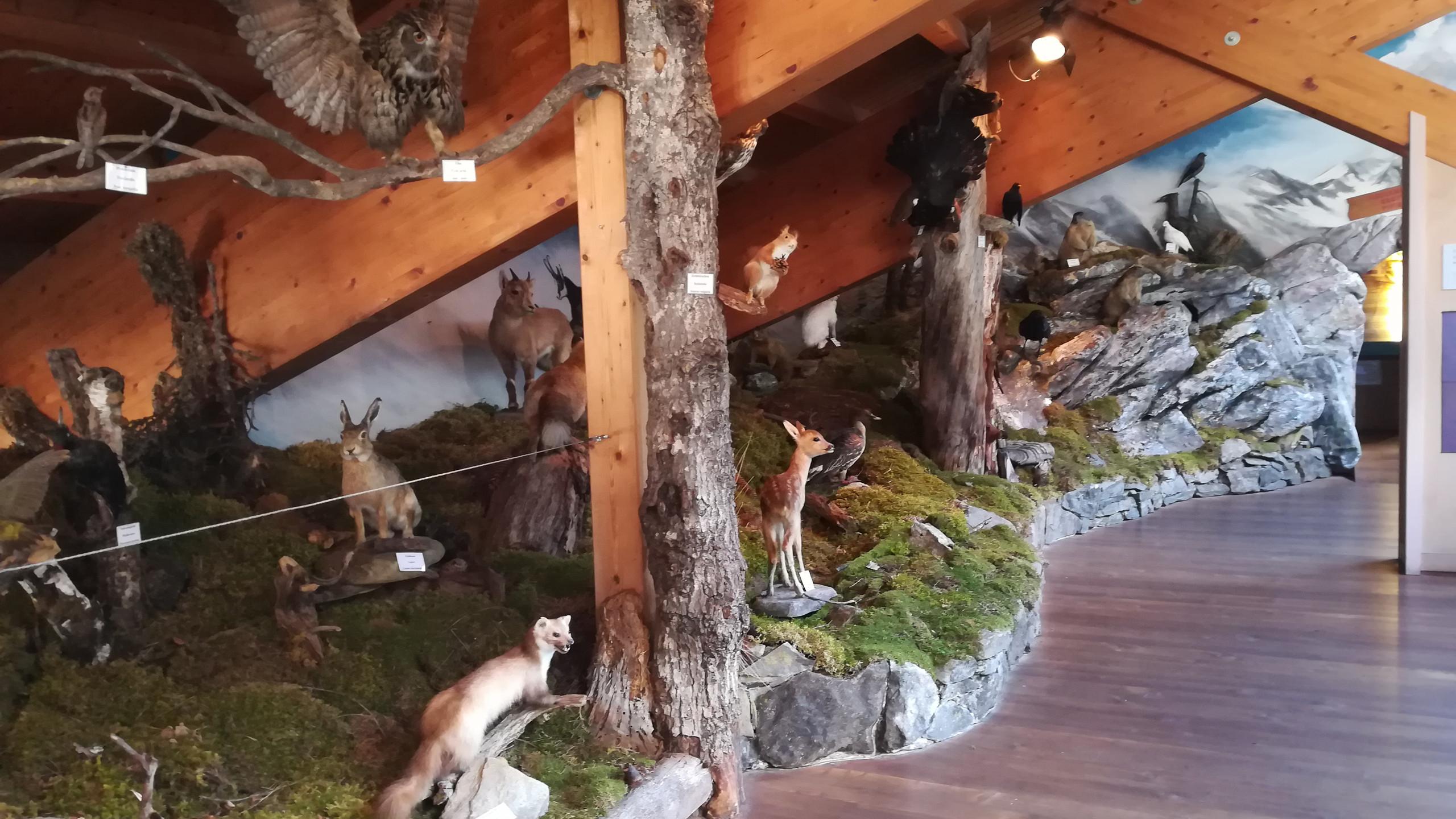 Centro visite Naturno Parco Naturale Gruppo di Tessa