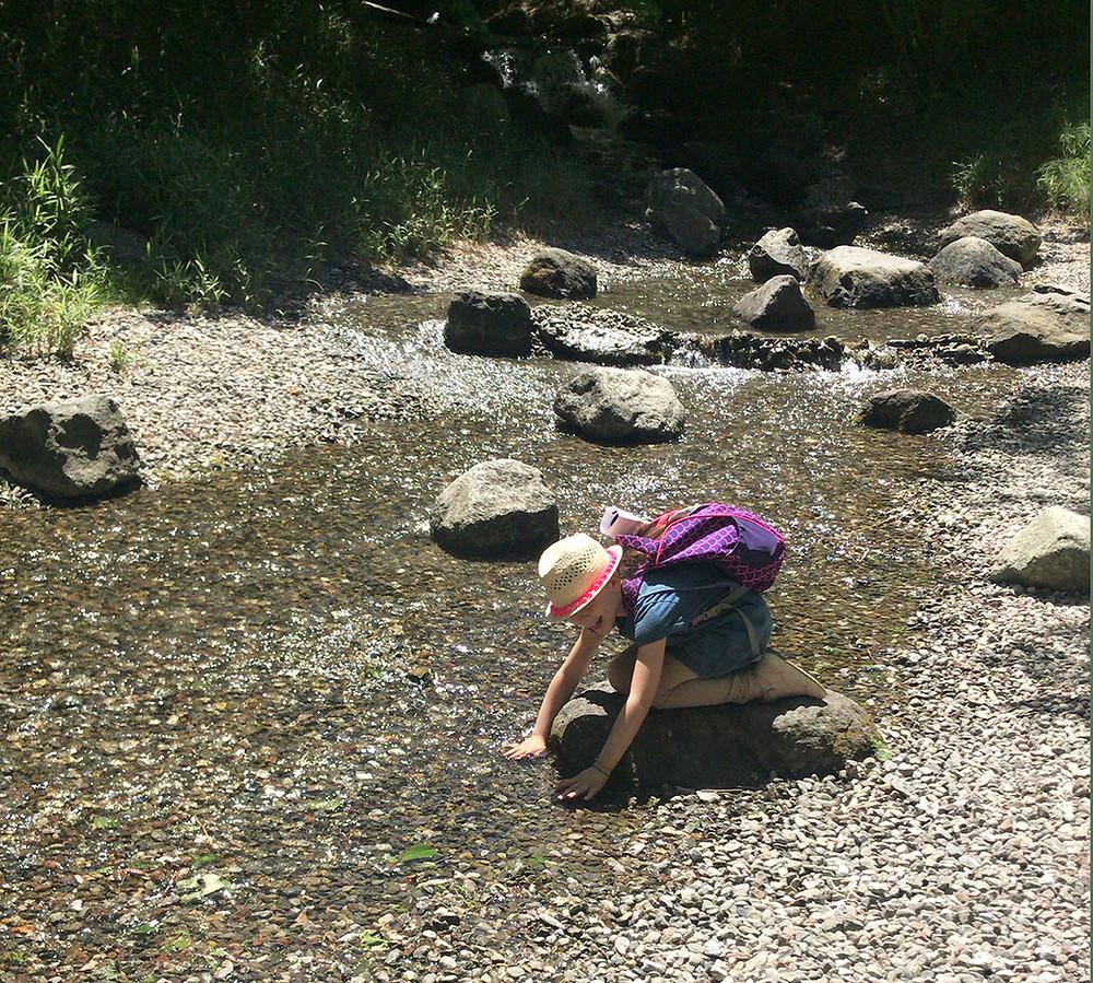 Giochi d'acqua nel ruscello