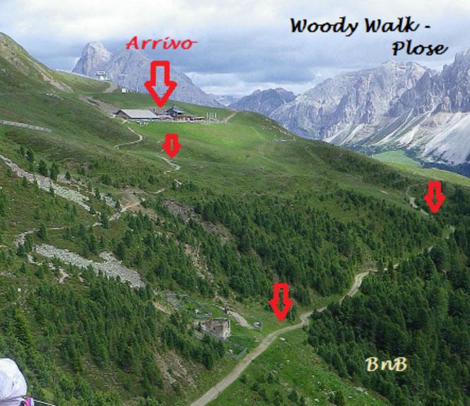 Plose Woodywalk
