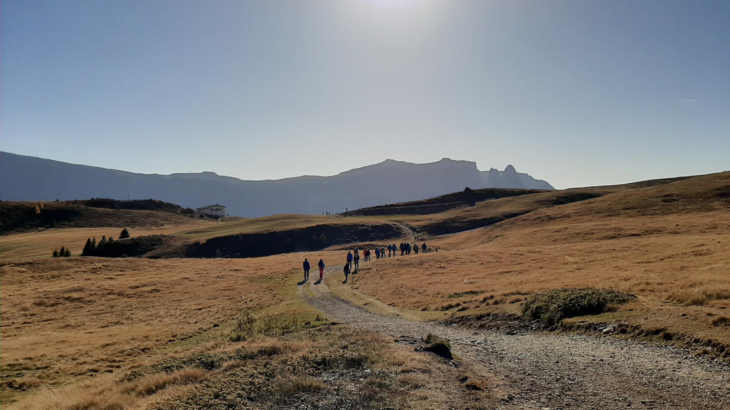 """Alpe di Siusi, sentiero """"Bullaccia - Puflatsch"""", la discesa"""