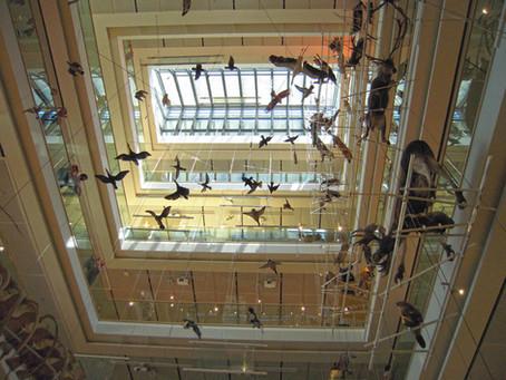 TRIENT: MUSE DAS WISSENSCHAFTSMUSEUM