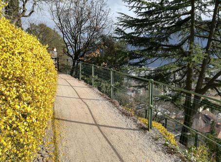 PASSEGGIATA DEL GUNCINA: Bolzano a piedi
