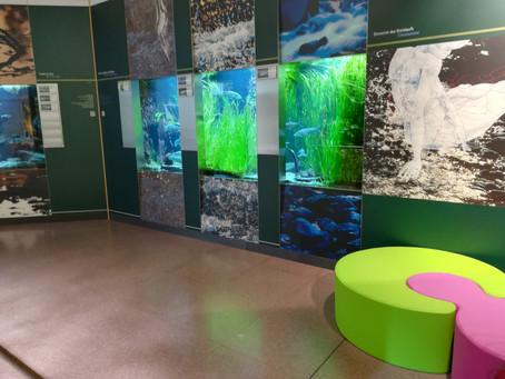 BOLZANO: IL RICCO MUSEO DI SCIENZE NATURALI