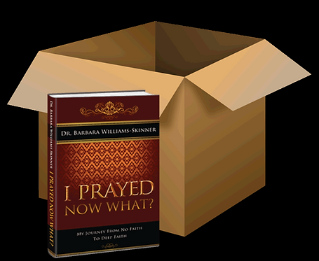 Case of 12 Books: I Prayed, Now What?