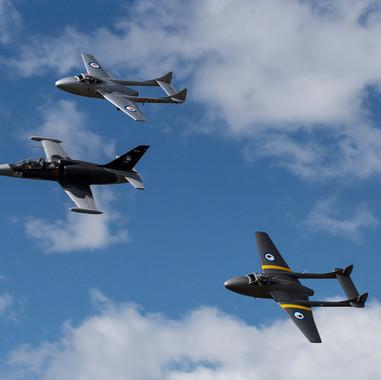 Vampires and L-29 Albatros