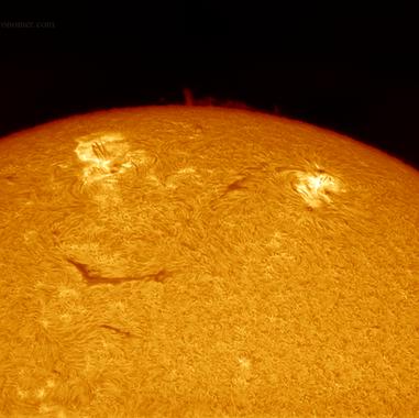 Solar Limb