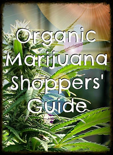 Organic marijuana shoppers guide