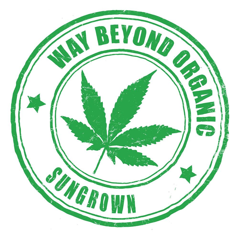 Organic marijuana sun grown