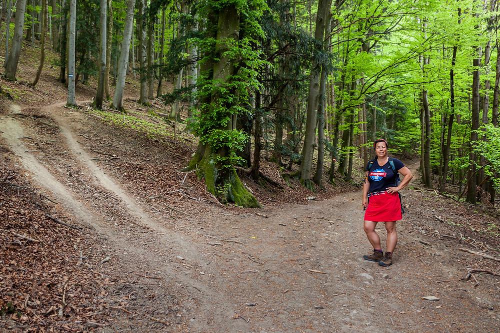 Wanderweg, Wandern, Wanderin, Mostviertel, Niederösterreich