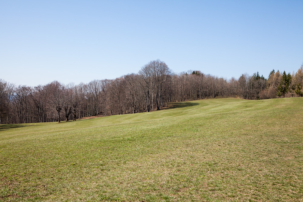 Josef-Franz-Hütte, Rabenstein, Pielachtal, Mostviertel, Niederösterreich, Wandern, Wanderung
