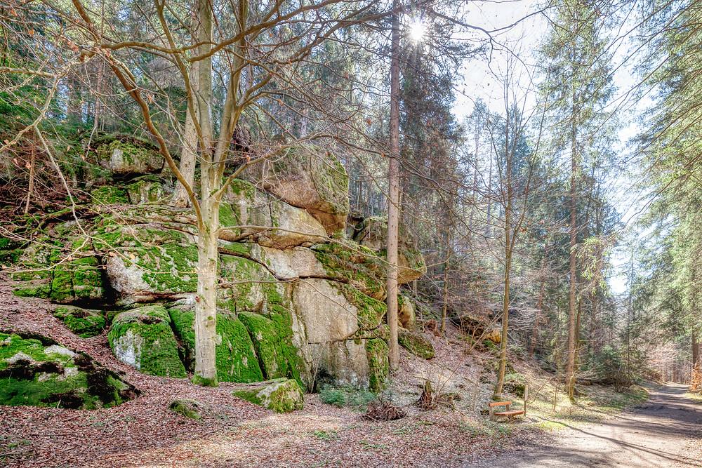 Schütt, Rappottenstein, Kamp, Kamptal, Waldviertel, Niederösterreich, Wandern, Wanderung, Naturdenkmal