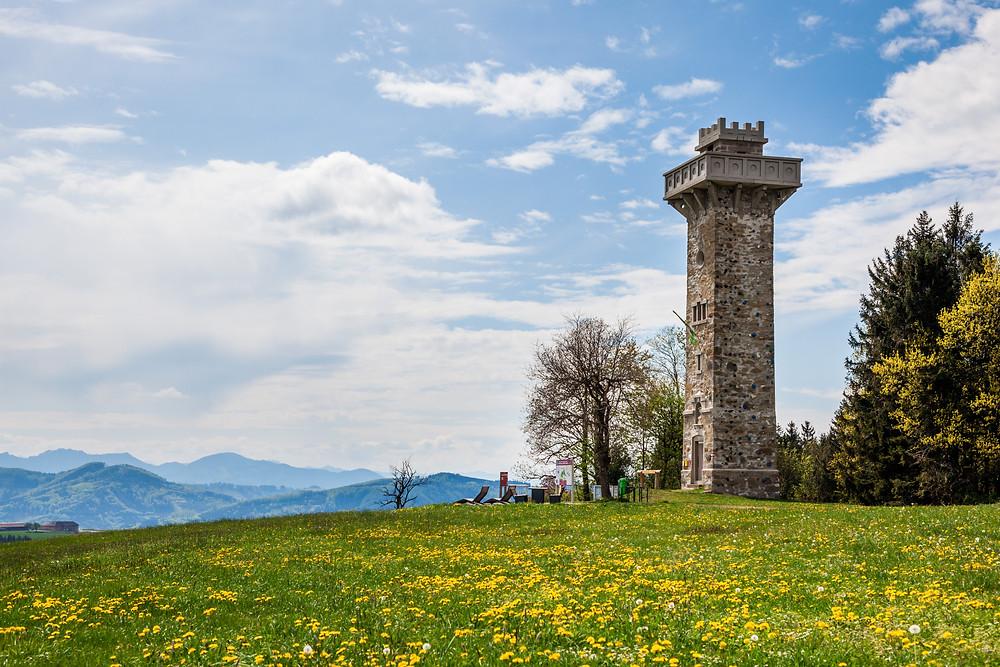 Mostviertel, Niederösterreich, Mostbirnbaum, Birnbaum, Birnbaumblüte, wandern, Wanderung, Wanderurlaub, Wanderreise, Urlaub, Elisabethwarte, Elisabeth-Warte