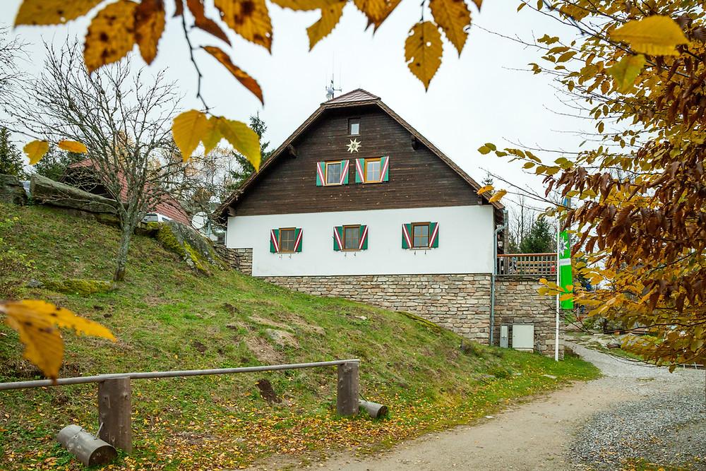 Nebelstein, Waldviertel, wandern, Wanderung, Niederösterreich, Wanderurlaub, Wanderreise, Herbst, Wald, Nebelsteinhütte