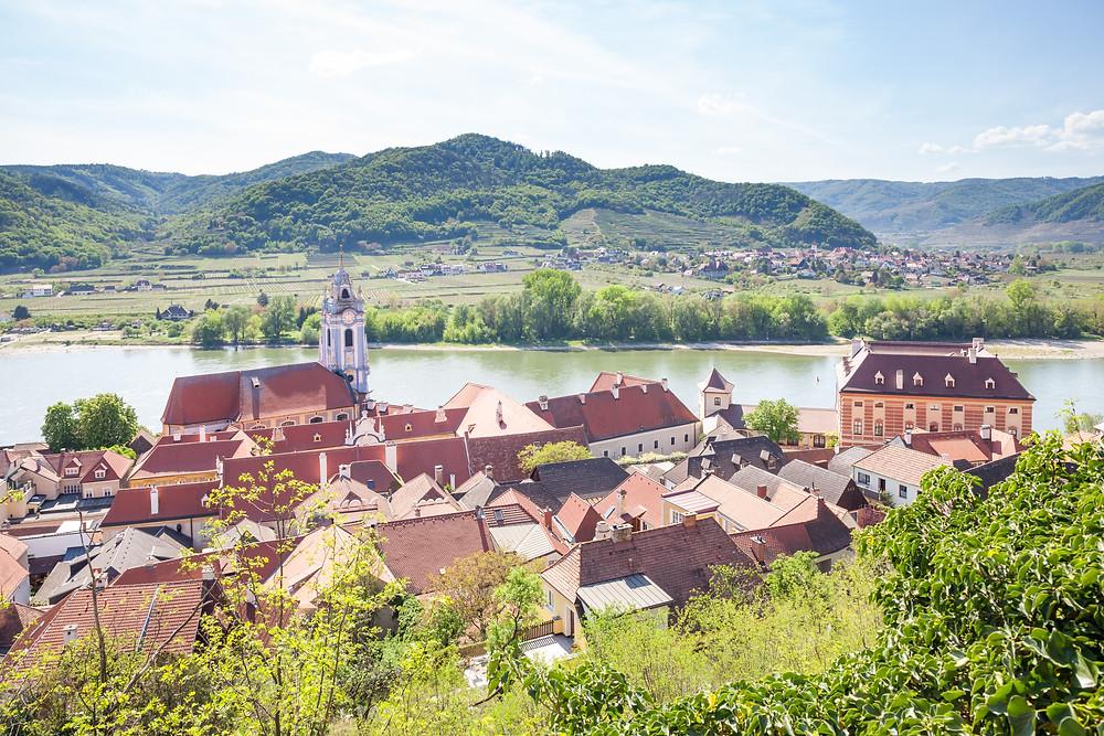 Eselsteig, Stift Dürnstein, Dürnstein, Wachau, Niederösterreich, Donau, Donautal, Wandern, Ausflug, Wandertipp