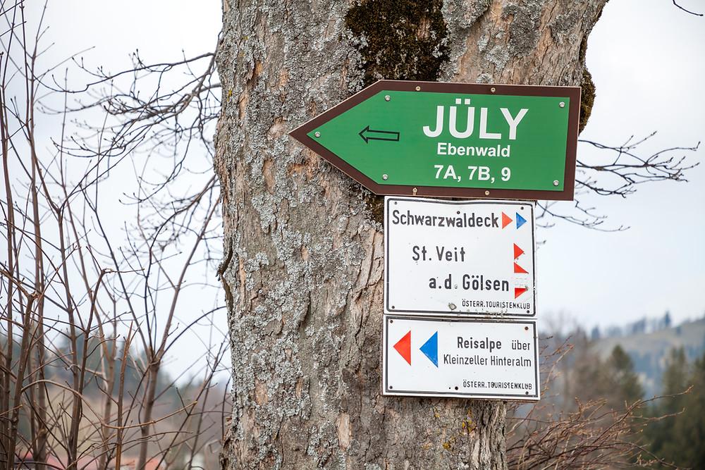 Kiensteinder Öde, Ebenwaldhöhe, Voralpen, Kleinzell, Niederösterreich, Wandern, Wandung, Almen, Alm, Weide