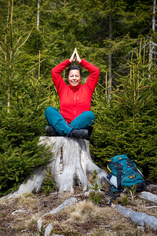 Yoga, Rast, Wanderer, Wald, Kiensteinder Öde, Ebenwaldhöhe, Voralpen, Kleinzell, Niederösterreich, Wandern, Wandung, Almen, Alm, Weide