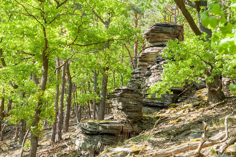 Felsen, Steinformationen, Wandern, Wandertipp, Wachau, Niederösterreich