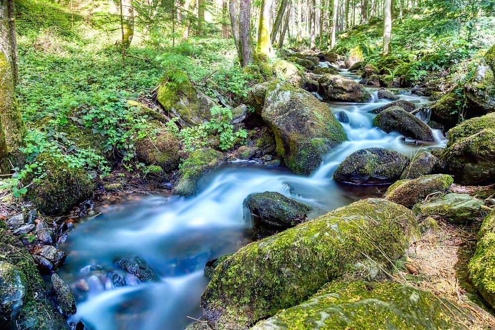 Wasserfall, Wildwasser, Waldbach, Steinbachklamm, Nibelungengau, Waldviertel, Donau, Niederösterreich, Wandern, Ausflug, Wandertipp