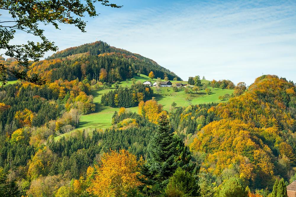 Mostviertel, Herbst, Herbstverfärbung, Bauernhof, wandern, Wanderung, Niederösterreich